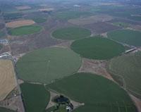 コロンビア盆地の潅漑農法の畑
