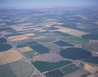 潅漑農法の畑 コロンビア盆地