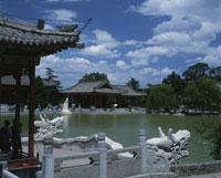 興慶宮公園 25653006659| 写真素材・ストックフォト・画像・イラスト素材|アマナイメージズ