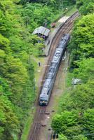 土讃線の秘境駅(坪尻駅)を通過する2000系特急南風