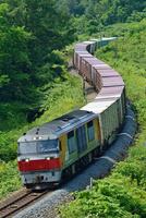 S字カーブを走る室蘭本線のDF200牽引貨物列車