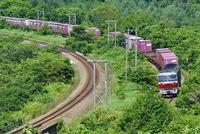 カーブを曲がる室蘭本線のDF200牽引貨物列車