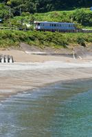 海沿いを走る土讃線の1000形普通気動車