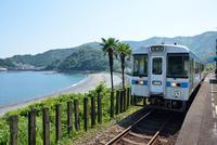 海沿いの駅に進入する土讃線の1000形普通気動車