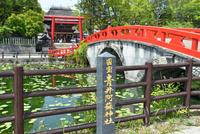 青井阿蘇神社(国宝)の蓮池と禊橋、鳥居と楼門