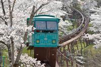 船岡城址公園のスロープカー