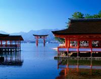 厳島神社 25709003162| 写真素材・ストックフォト・画像・イラスト素材|アマナイメージズ