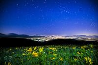 ニッコウキスゲ咲く霧ヶ峰高原より富士山南アルプス連峰方面街明かりと夏の星空