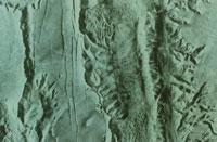 火星 マリネリス峡谷