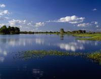 イエローウォーター カドゥ国立公園