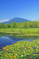 妙高高原いもり池と黒姫山
