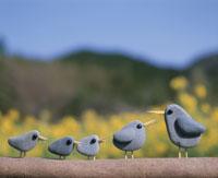 小石の小鳥の親子