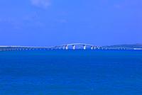 伊良部大橋 25801013843| 写真素材・ストックフォト・画像・イラスト素材|アマナイメージズ