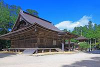 高野山の大会堂と東塔