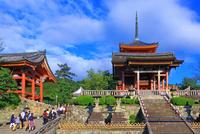 清水寺の観光客