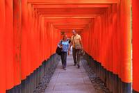 千本鳥居の外国人 25801014159| 写真素材・ストックフォト・画像・イラスト素材|アマナイメージズ