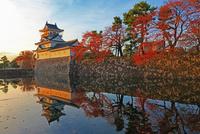 秋の富山城