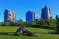 公園と近代的なビル群