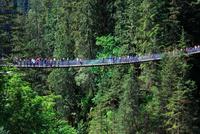 カピラノつり橋