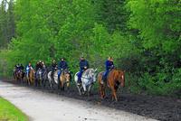 乗馬の練習 25801014714| 写真素材・ストックフォト・画像・イラスト素材|アマナイメージズ