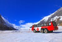 コロンビア大氷原と雪上車 25801014948| 写真素材・ストックフォト・画像・イラスト素材|アマナイメージズ