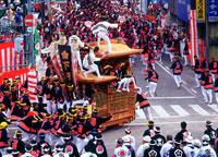 岸和田だんじり祭 25805001426| 写真素材・ストックフォト・画像・イラスト素材|アマナイメージズ