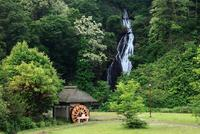 新緑の七滝と水車小屋