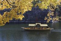紅葉の大阪城と大阪城御座船
