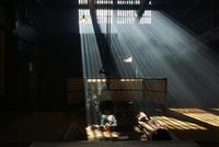 囲炉裏端 25813003072| 写真素材・ストックフォト・画像・イラスト素材|アマナイメージズ