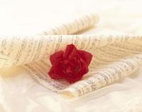 赤いバラと楽譜