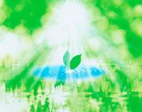 葉と水紋イメージ