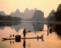 鵜飼い漁 漓江