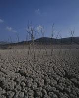 干ばつ 25826022415| 写真素材・ストックフォト・画像・イラスト素材|アマナイメージズ