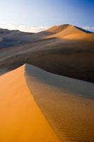 ゴビ砂漠 25826024566| 写真素材・ストックフォト・画像・イラスト素材|アマナイメージズ