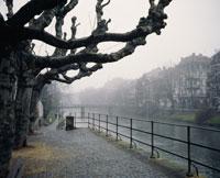 イル川と霧