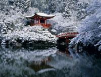 雪の醍醐寺 25846003987| 写真素材・ストックフォト・画像・イラスト素材|アマナイメージズ