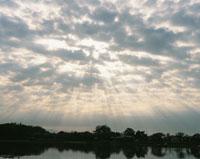 広沢池の朝景
