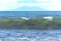サケ 遡上前の波間 25851006383| 写真素材・ストックフォト・画像・イラスト素材|アマナイメージズ