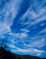 秋空に広がる雲