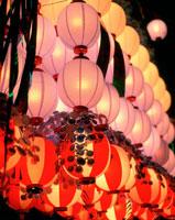 提灯 平塚の七夕祭