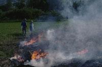 春の焼畑 25890000979  写真素材・ストックフォト・画像・イラスト素材 アマナイメージズ