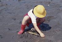 潮干刈り遠足 25890000998  写真素材・ストックフォト・画像・イラスト素材 アマナイメージズ