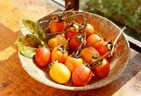 器に入った柿の実 25890001195  写真素材・ストックフォト・画像・イラスト素材 アマナイメージズ