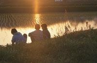 あぜ道の子どもたち 夕陽 25890001515  写真素材・ストックフォト・画像・イラスト素材 アマナイメージズ