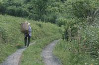 かごを背負った農婦 25890001678  写真素材・ストックフォト・画像・イラスト素材 アマナイメージズ