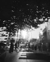 夏至の街 25890002070  写真素材・ストックフォト・画像・イラスト素材 アマナイメージズ