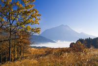 湯布院の雲海と由布岳 25905026860| 写真素材・ストックフォト・画像・イラスト素材|アマナイメージズ