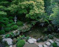 堀庭園 25940001559| 写真素材・ストックフォト・画像・イラスト素材|アマナイメージズ