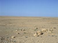 大シリア砂漠