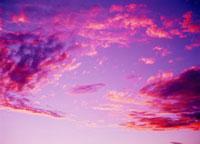 夕焼け ベレンティ保護区 25947029987| 写真素材・ストックフォト・画像・イラスト素材|アマナイメージズ